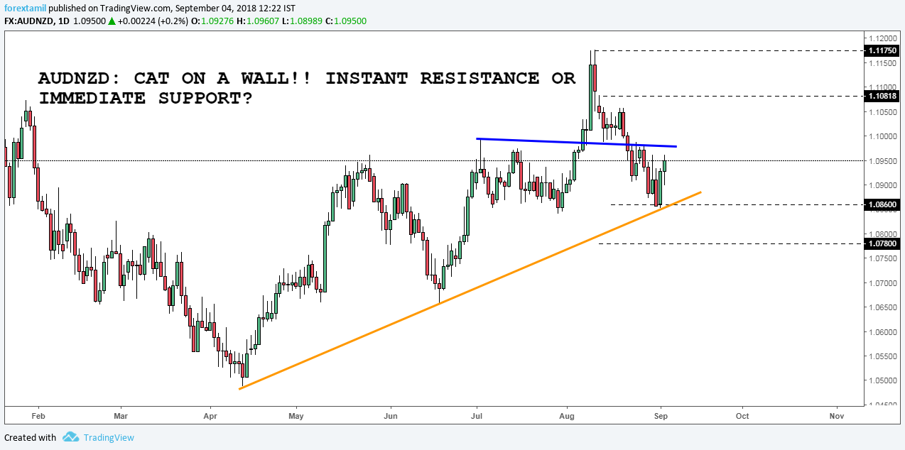 AUDNZD: CAT ON A WALL!! INSTANT RESISTANCE OR IMMEDIATE SUPPORT?