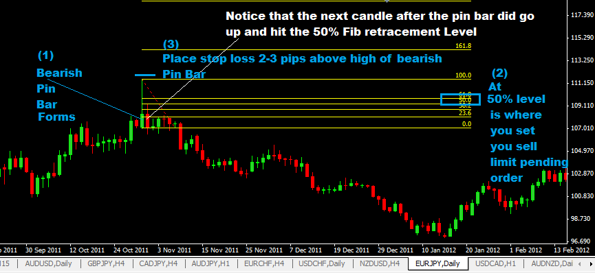 Daily Pin Bar Forex Trading Strategy